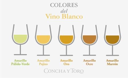 Colores-del-vino-blanco-01